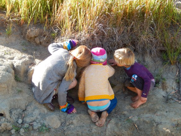 Yabby Creek Adventure, Kids checking out a water dragon's nest, 12 March, 2014